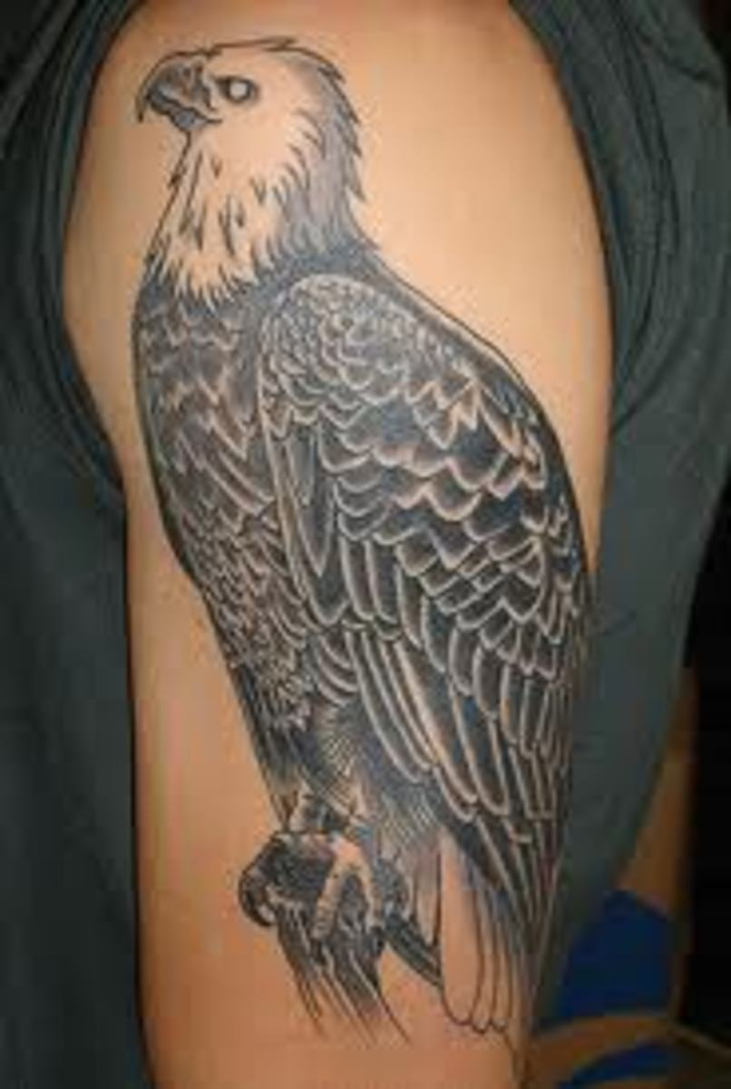 Great Eagle Tattoo Ideas And Images; Eagle Tattoo History And Meanings; Learn About The Eagle