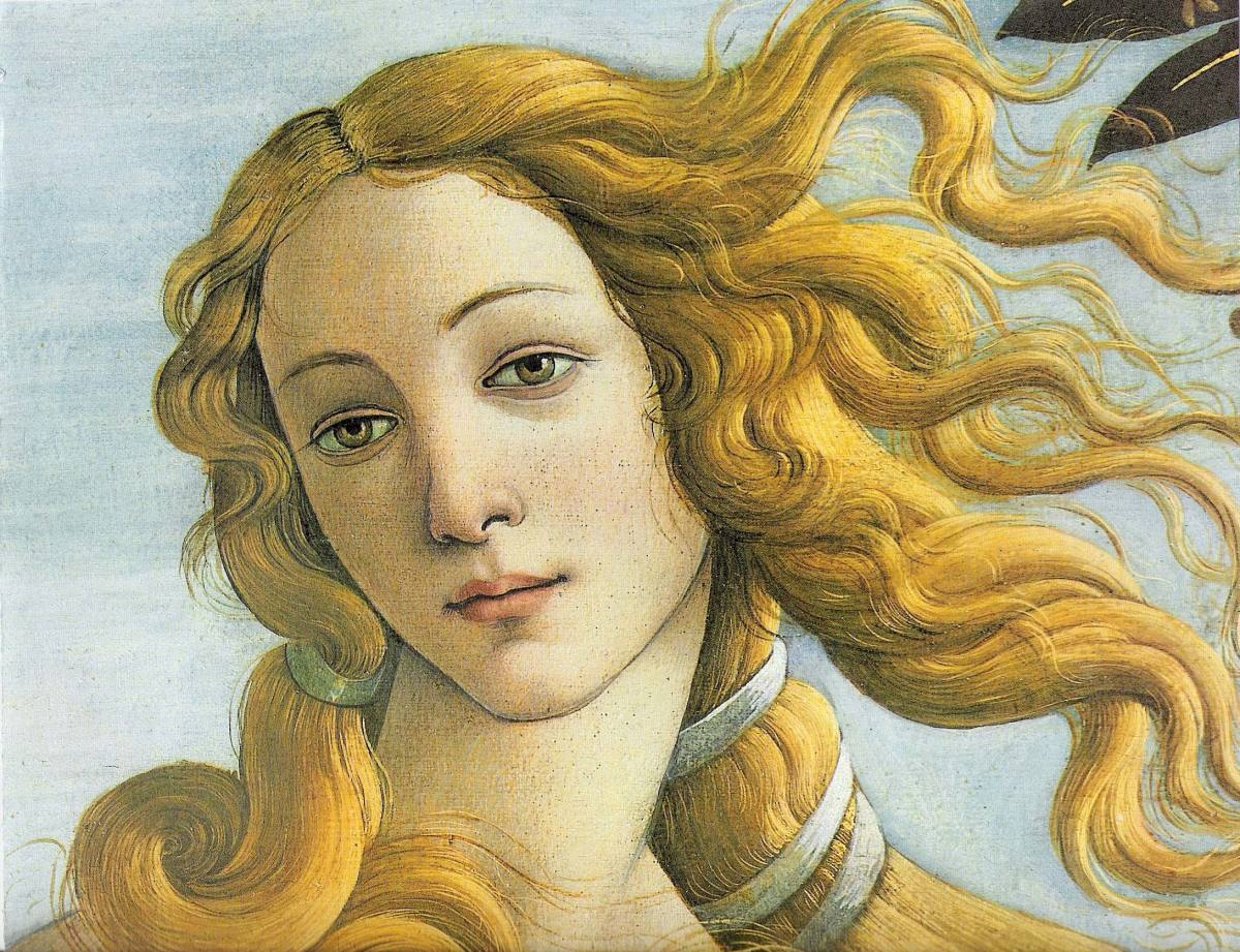 Partial Photo of  The Birth of Venus: By Sandro Botticelli