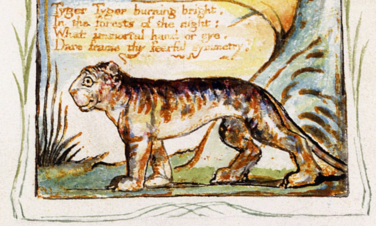 "from ""The Tyger"" by William Blake"
