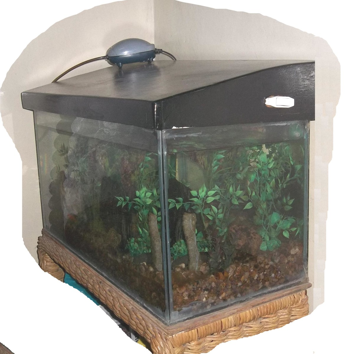 An aquarium with a light unit and air pump on top of the glass tank