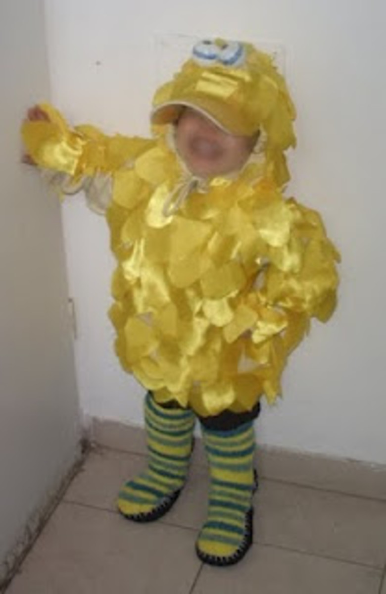 Homemade Bird Costume For Women Big Bird Costumes | hu...