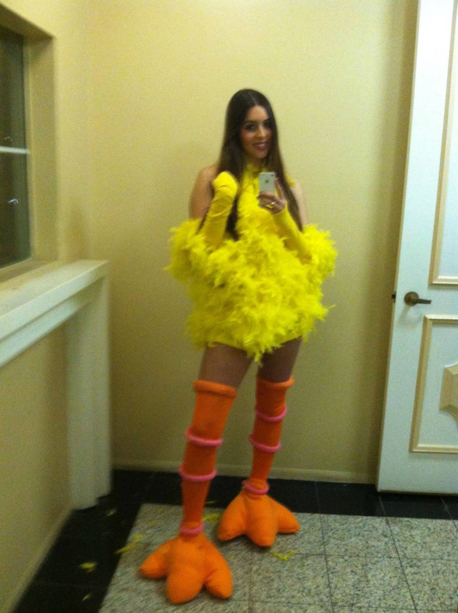 Homemade Bird Costume For Women Big Bird Costumes