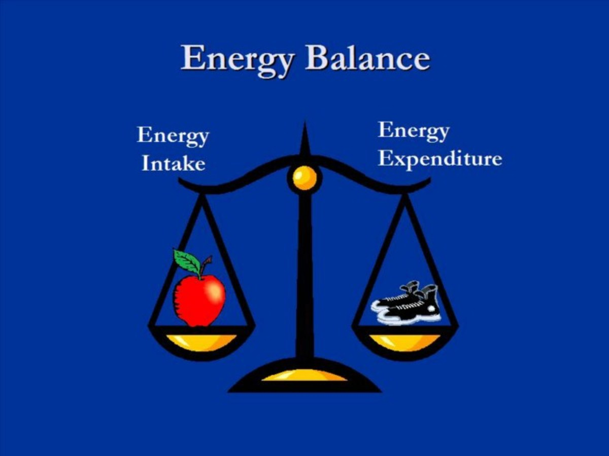 what is energy intake and expenditure in sports performance