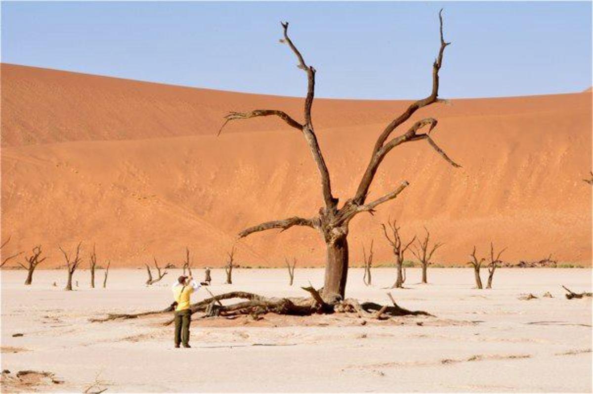 Skeleton Coast, Namibia © Mark Bielawny ~ http://www.africatravelresource.com/africa/namibia/nw/skeletoncoastnorth/guide/when-to-visit/