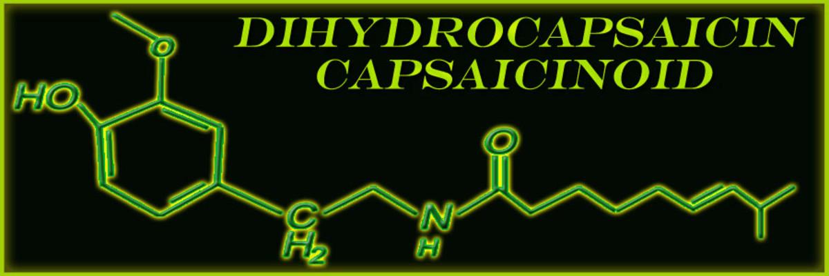 Dihydrocapsaicin Molecular Structure