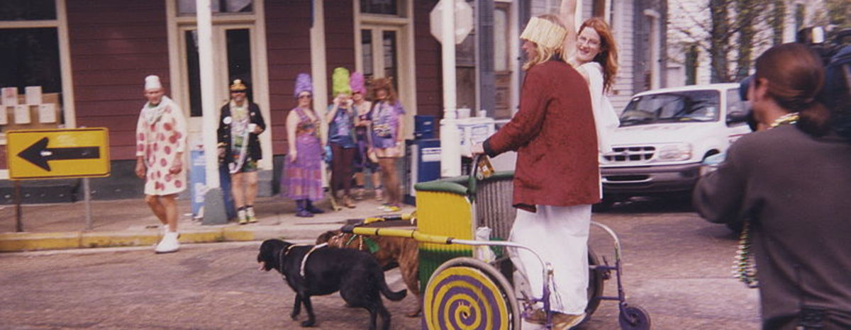 Example of dog carting with several dogs.