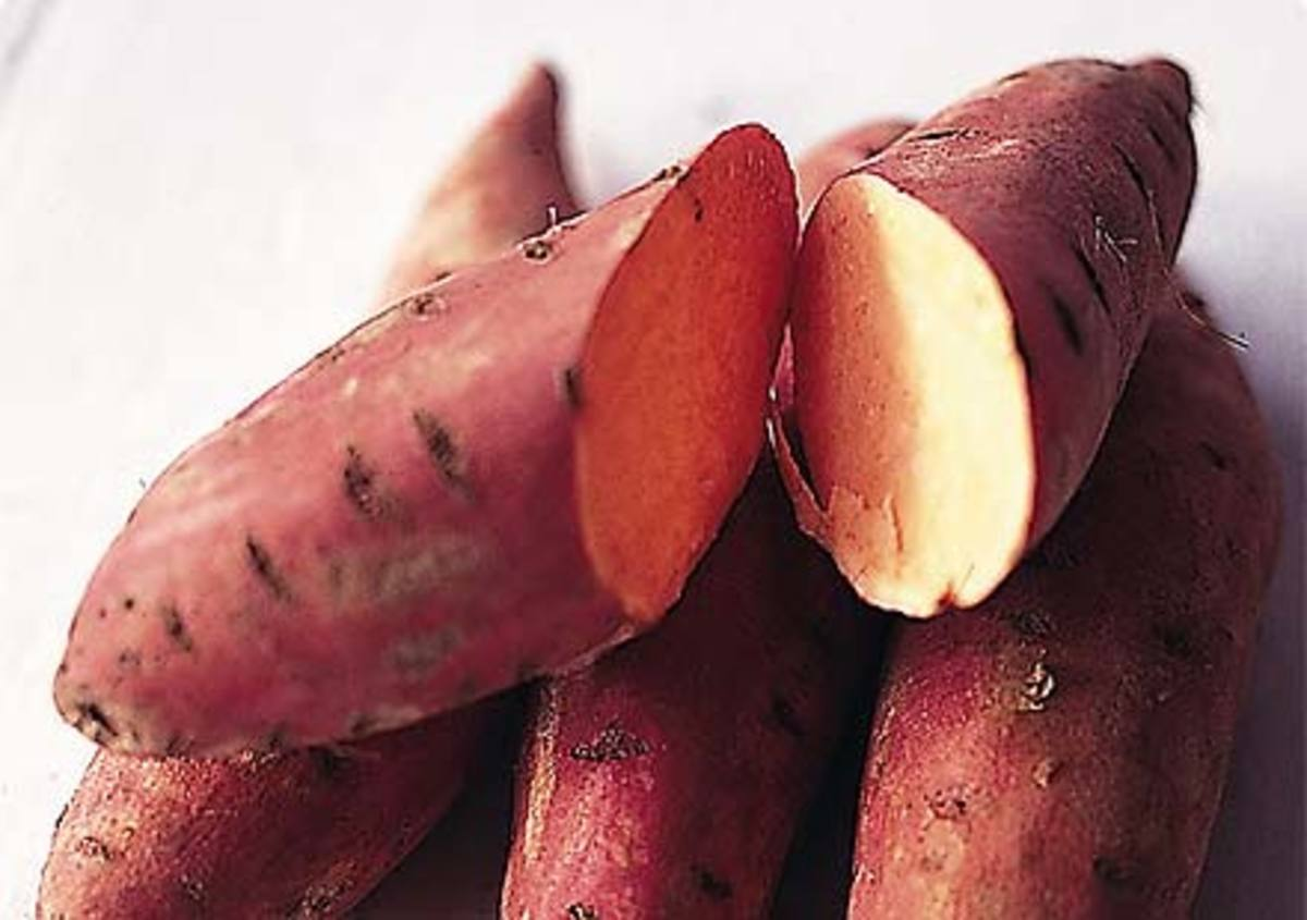 difference between sweet potatoes vs yams