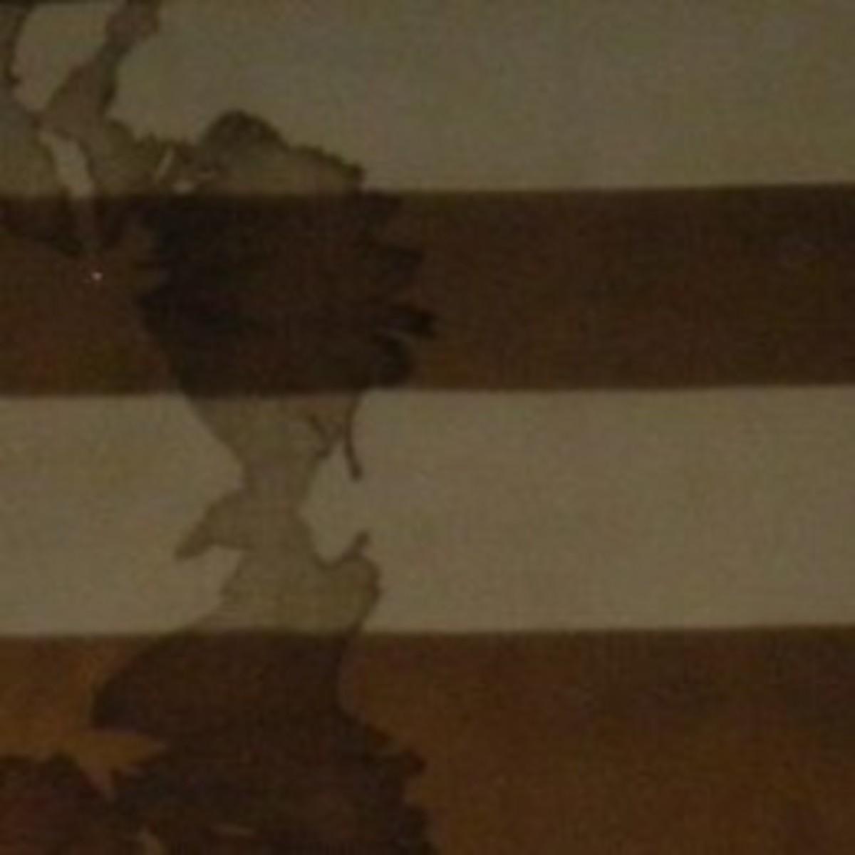 Old Fort Niagara Flag