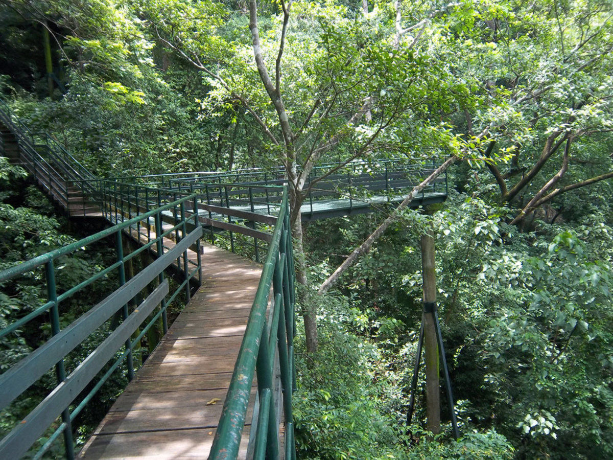 Thenmala Elevated pathway