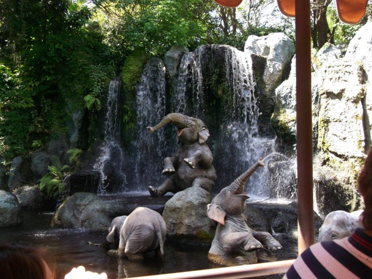 You can stay on your scooter for some rides, including the Jungle Cruise.