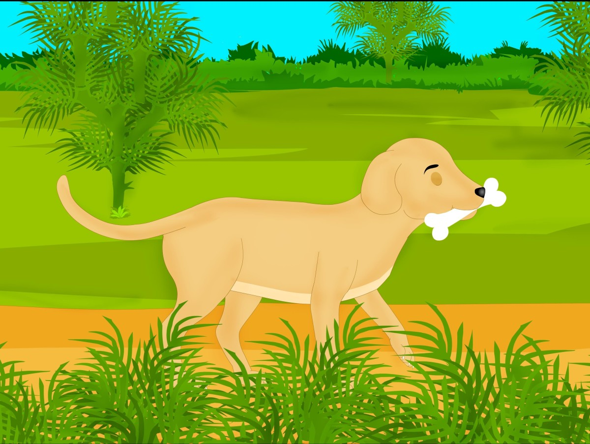 Short Moral Stories for Kids - the Greedy Dog Story a.k.a. the Dog and the Shadow Story