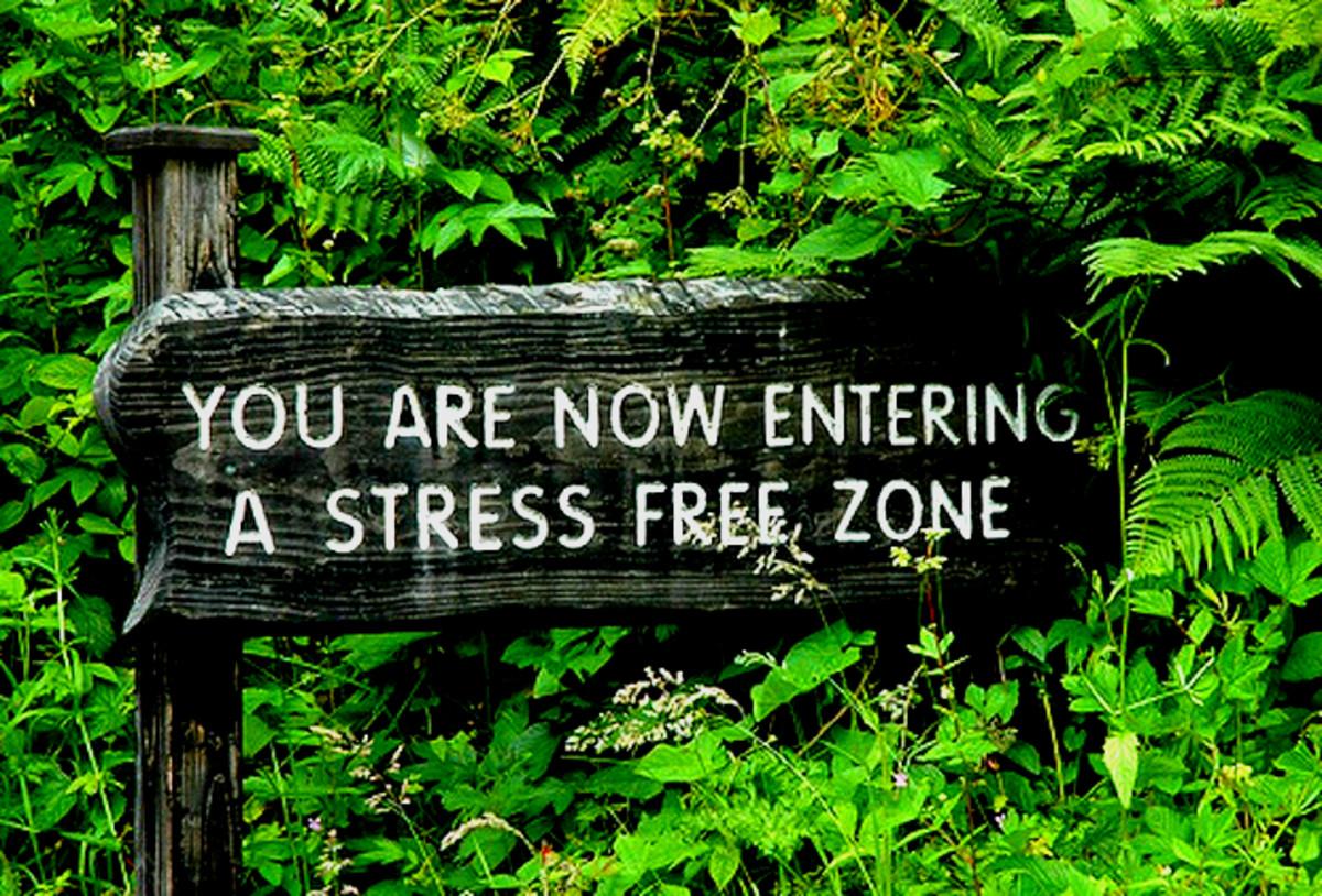 Sudarshan Kriya: Stress Buster