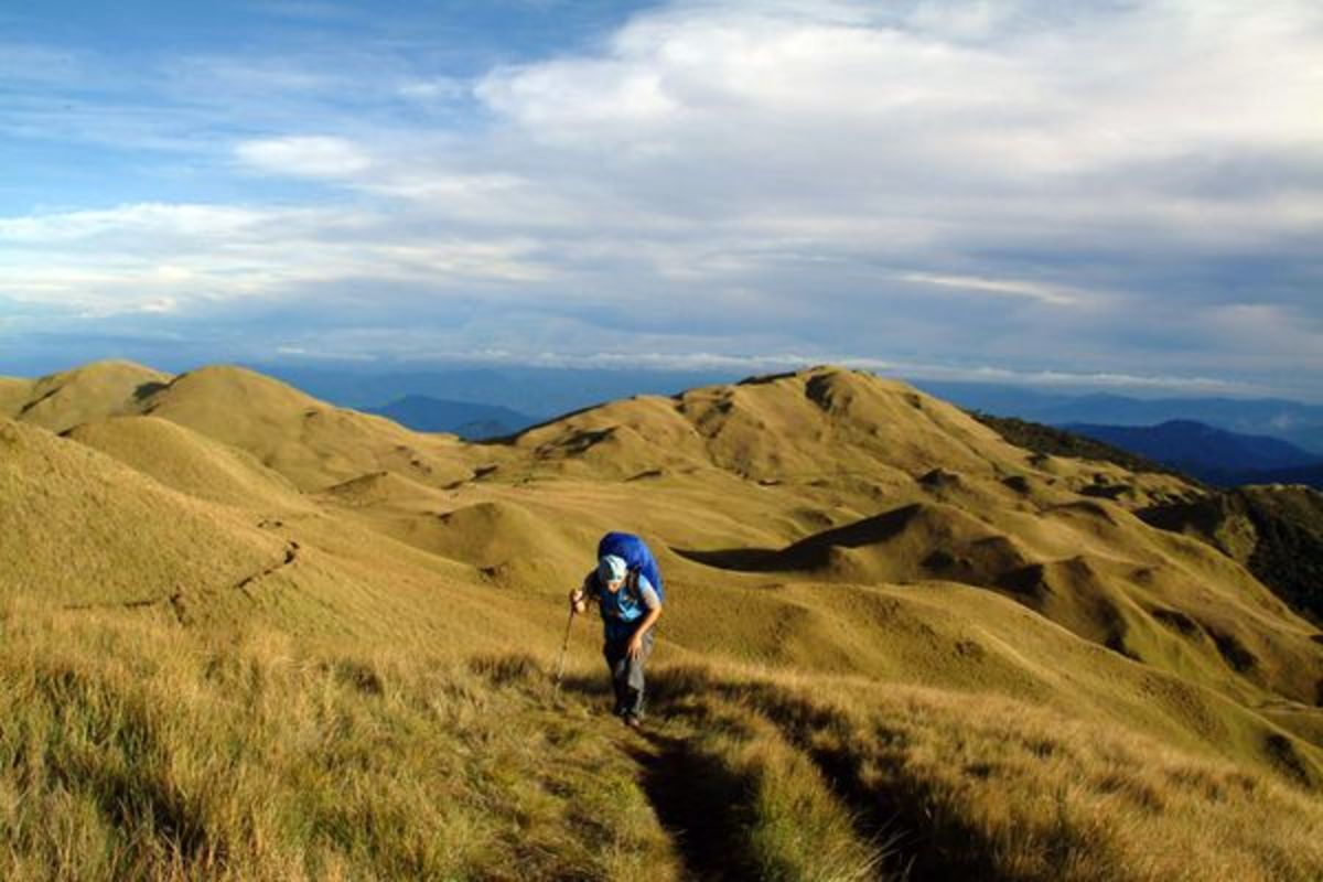Mount Pulag, Photograph by Zean Villongco, My Shot