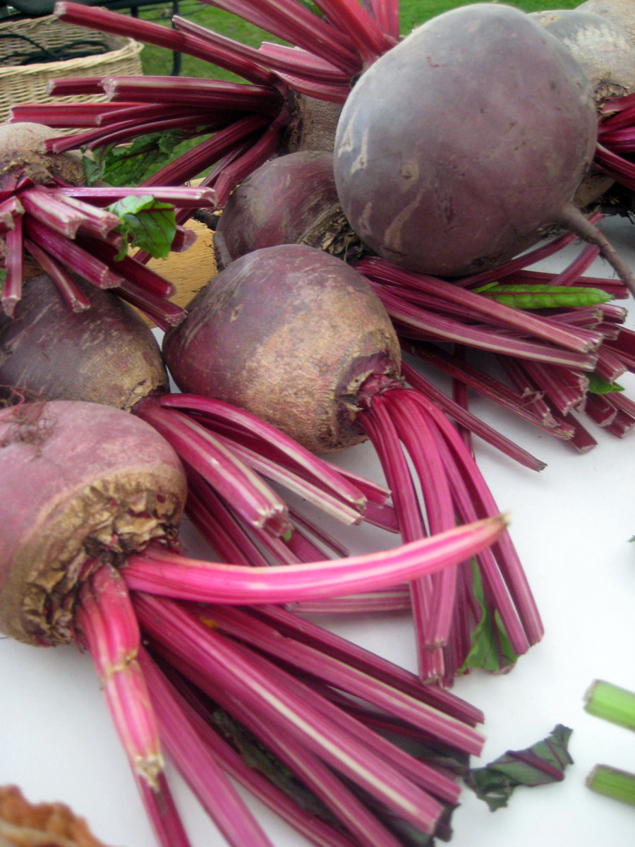 fresh beet may be used as in the video so perfect if you grow your own.
