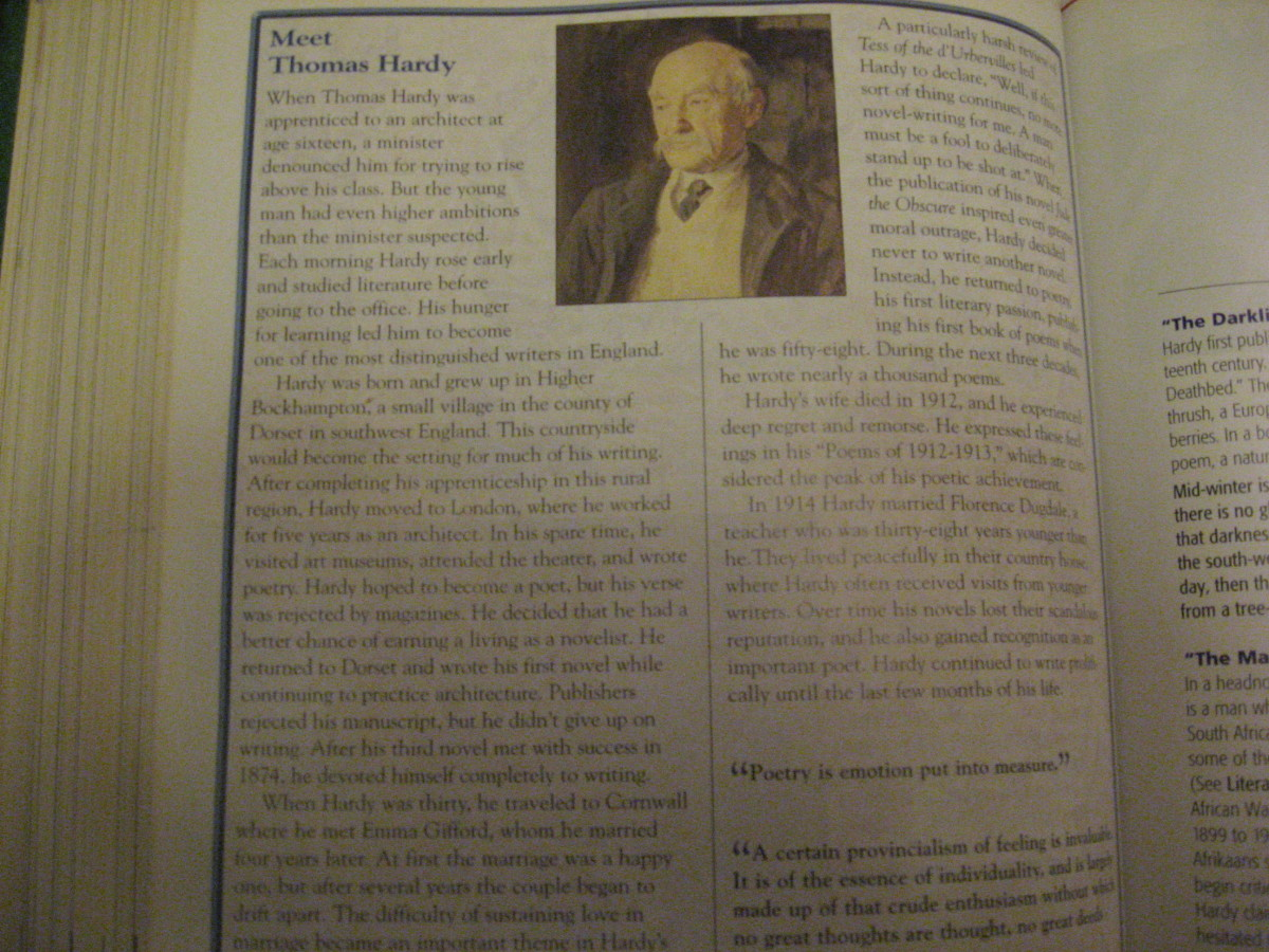 Essay Topics: Thomas Hardy