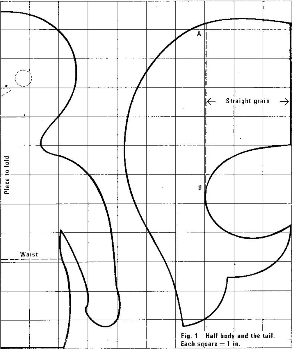Figure 1 - Half body and the tail - each square = 1 inch