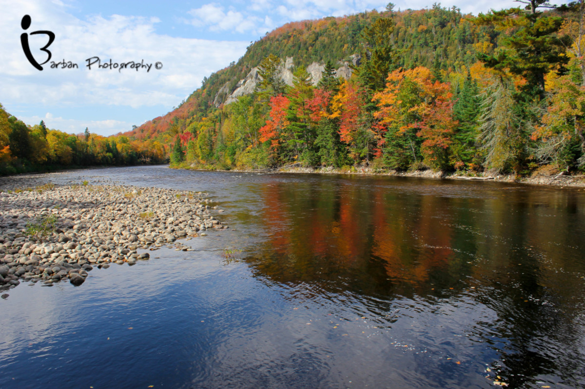 Fall along the Agawa River