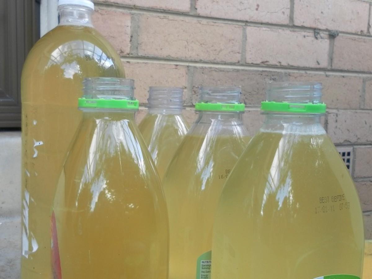 Bottles of homemade cleaner