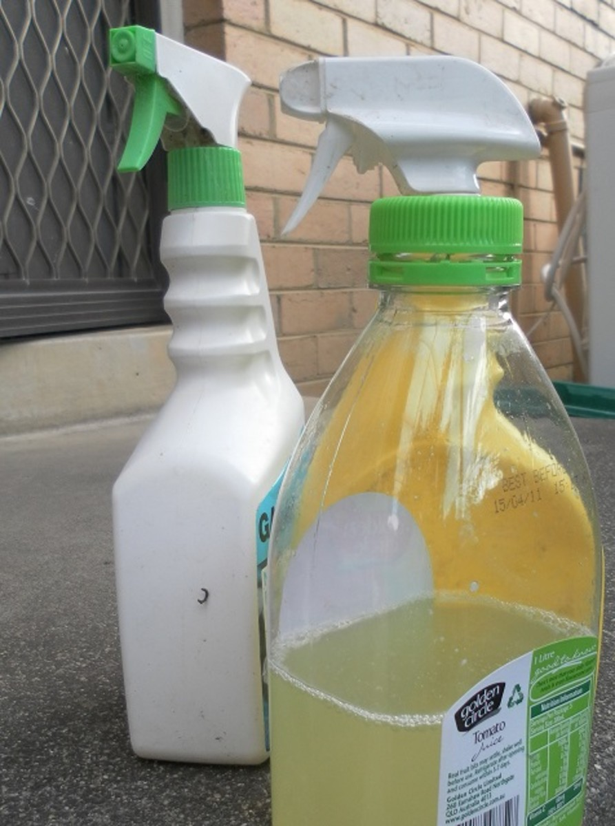 Fill up the spray bottles with citrus cleaner