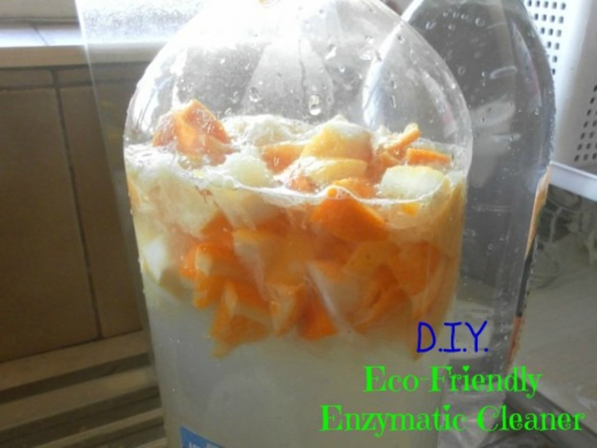 DIY Eco-Friendly Enzymatic Cleaner and Citrus Insect Spray