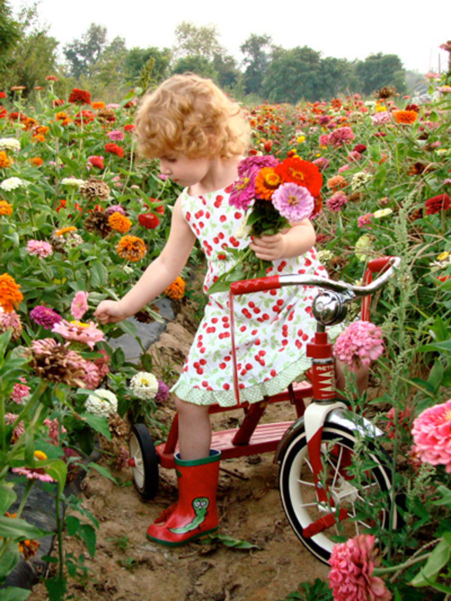 Children love picking flowers and drying them in the microwave! Flower pressing is more fun when you don't have to wait weeks for results.