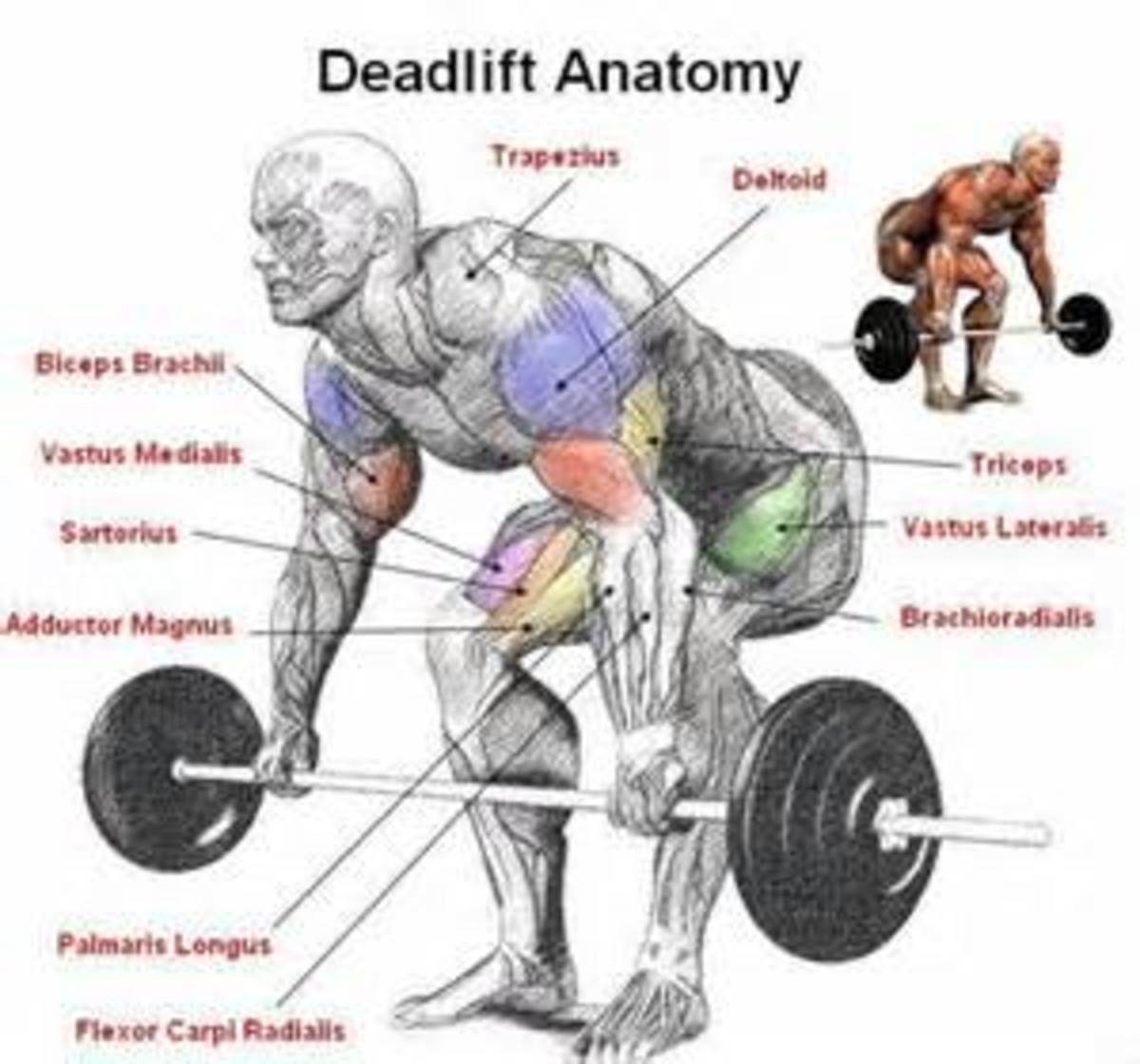 The Dead Lift: Monster of all Lifts