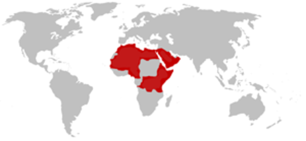 This map shows where the Egyptian Cobra is found.