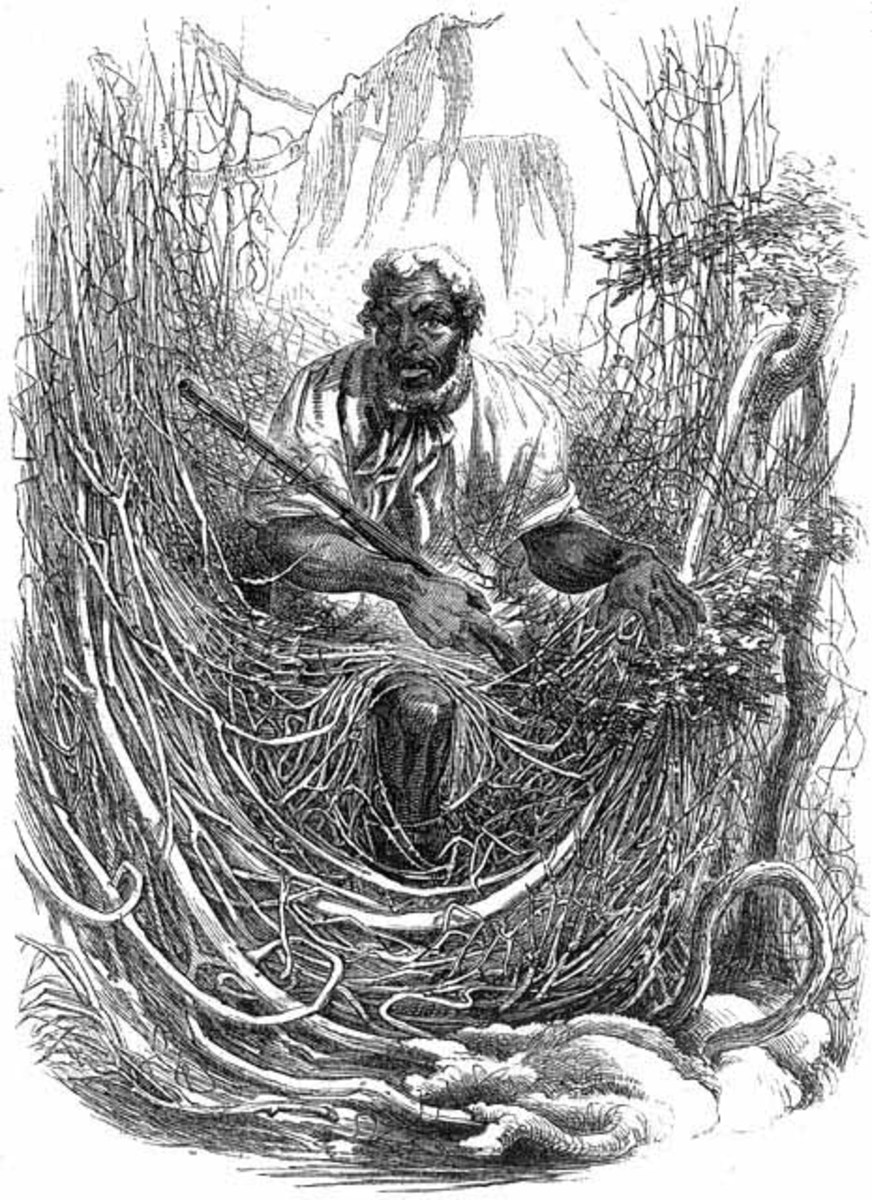 originally published in Harper's New Monthly Magazine, 1856 Osman, an escaped slave in the North Carolina part of the Great Dismal Swamp, 1856.  public domain