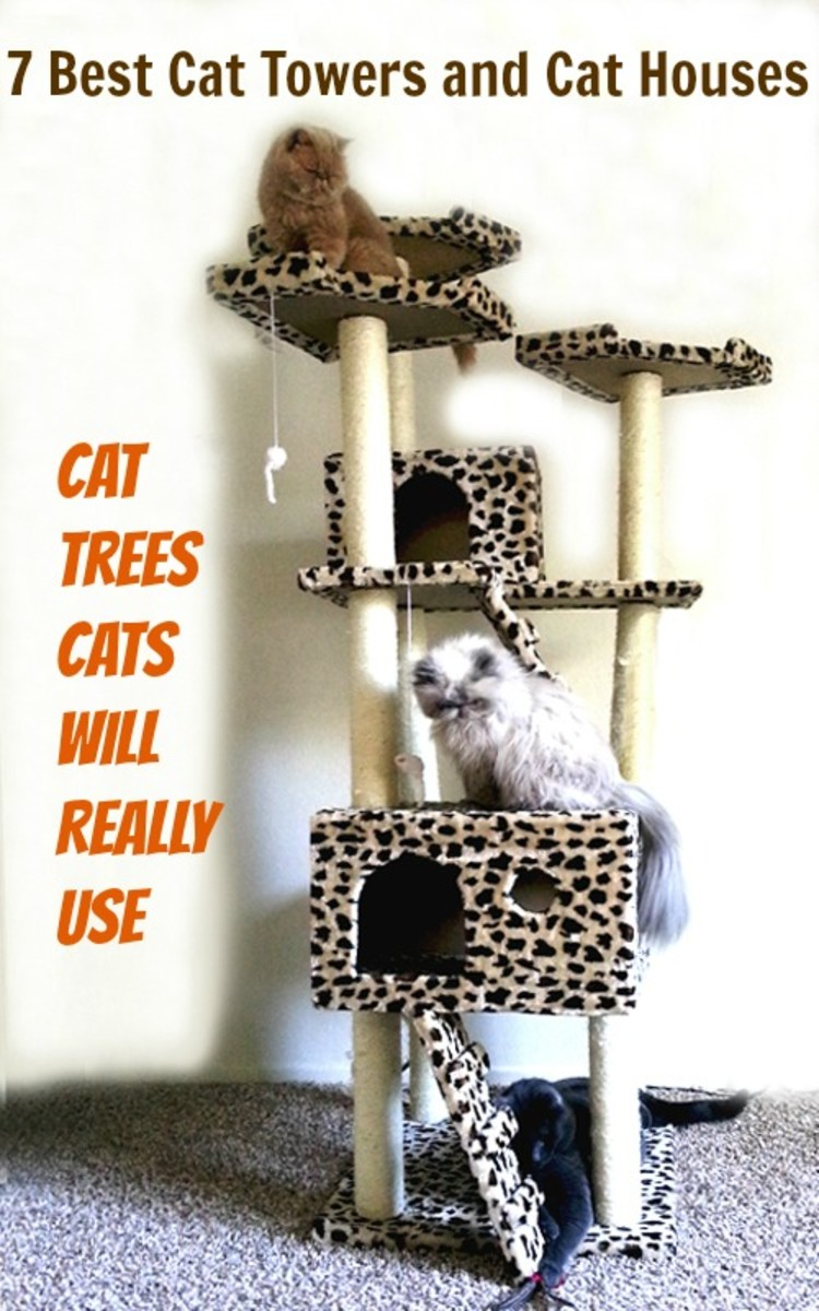The Duplex Cat Tree House