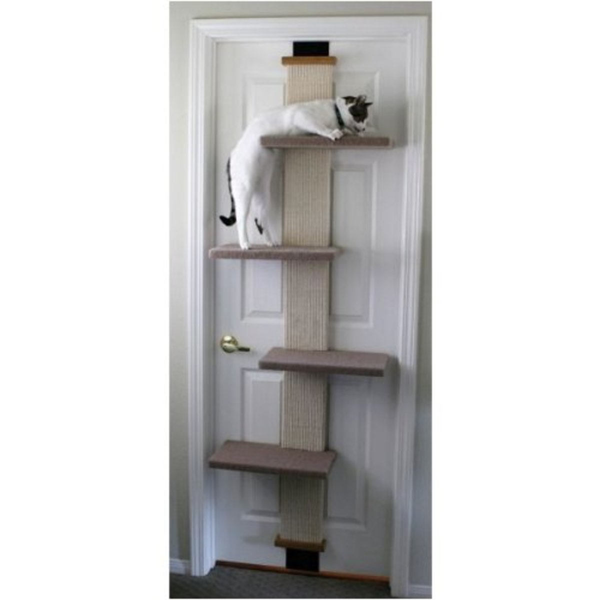 The Smart Cat Climber attaches to doors that swing.