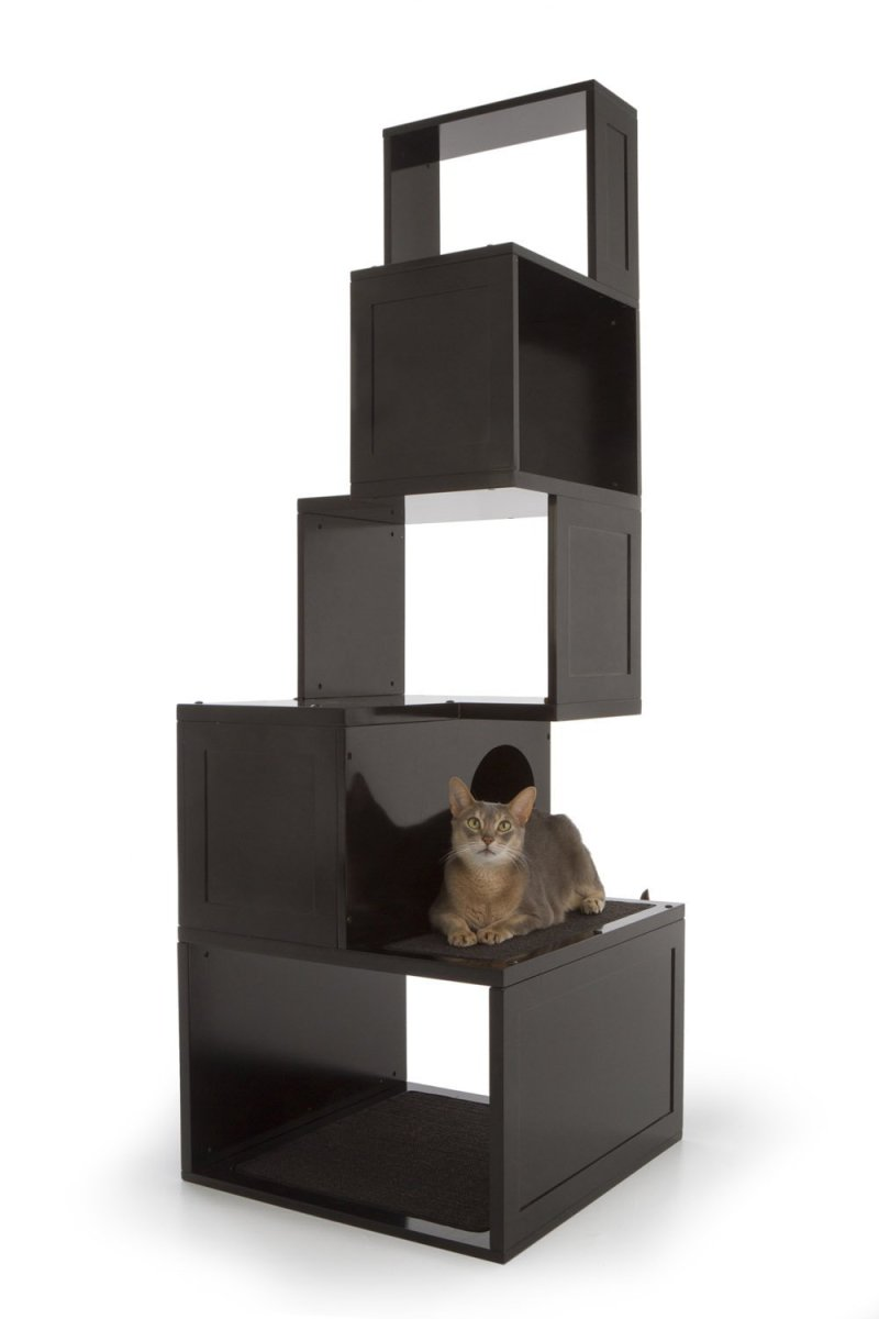 Sebastian Cat Climber in Black