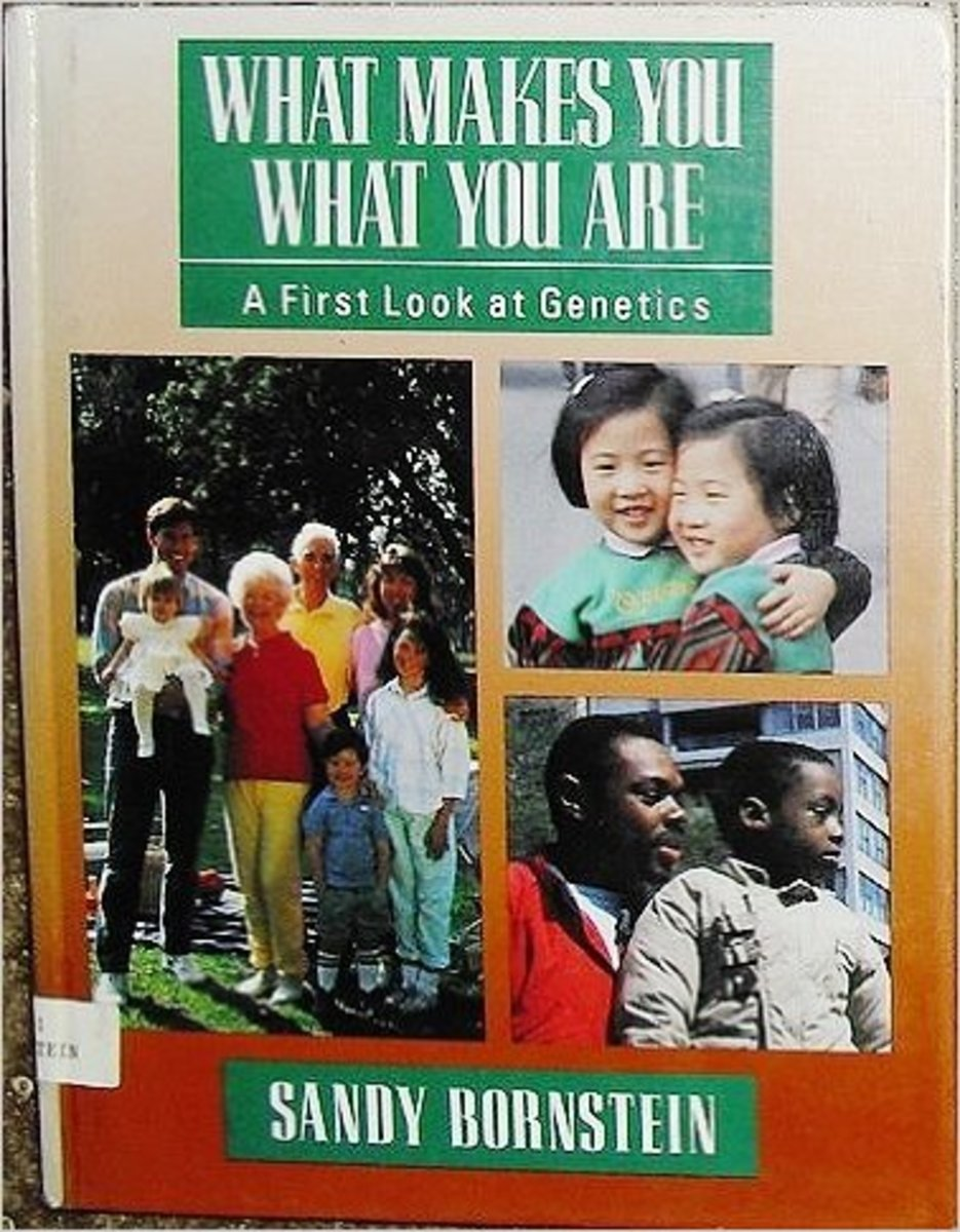 What Makes You What You Are by Sandy Bornstein
