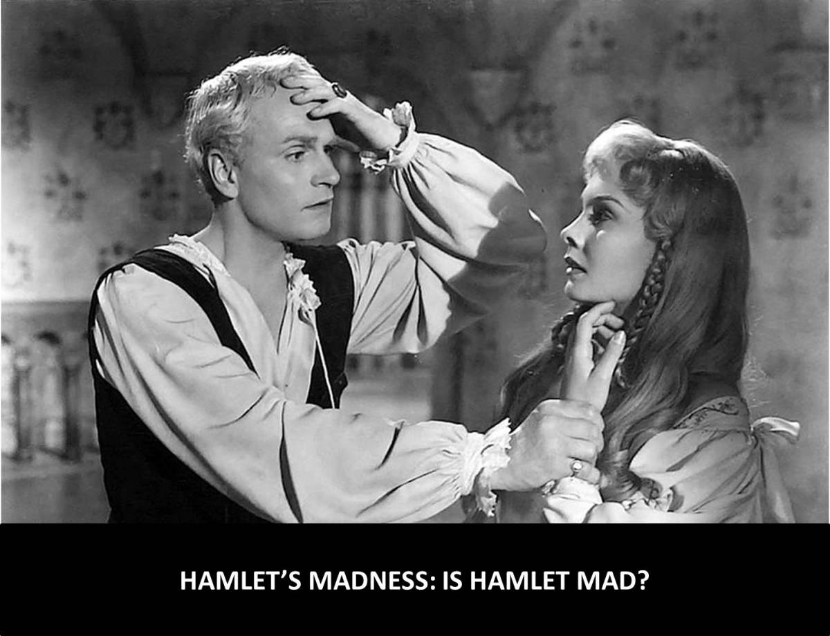 the question of madness in shakespeares Shakespeare, madness, and music : scoring insanity in cinematic adaptations,  2009  frenzy of words, thoughts, and questions, hamlet conceives a plan.