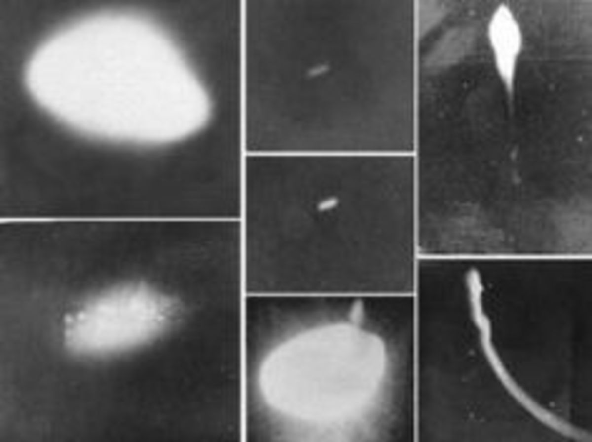 A composite of UFO photographs taking by the Brazilian military during the event.