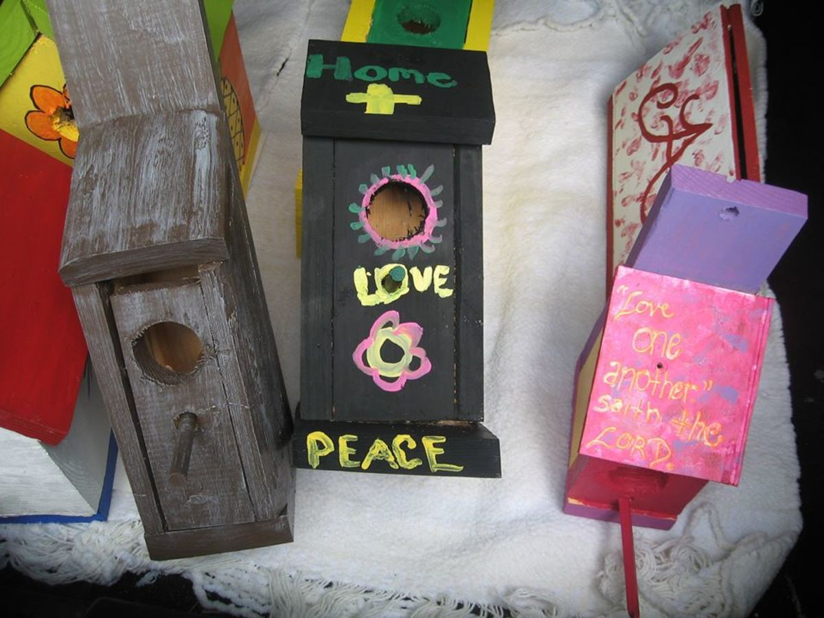 Alexis Nash and Jennifer McCarley had a lot of fun with my wife, Pam, designing these birdhouses.
