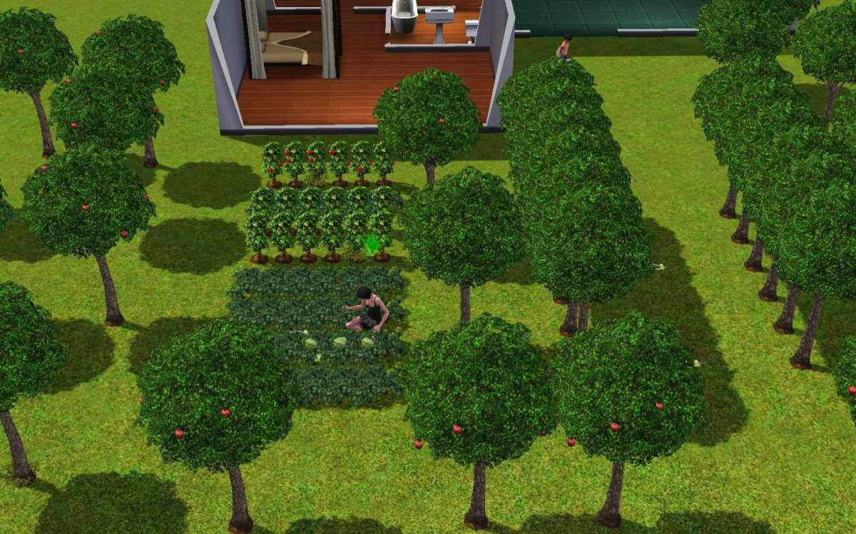 a-guide-to-gardening-in-the-sims-4