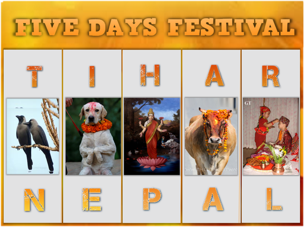 Five Days TIHAR Festival of NEPAL