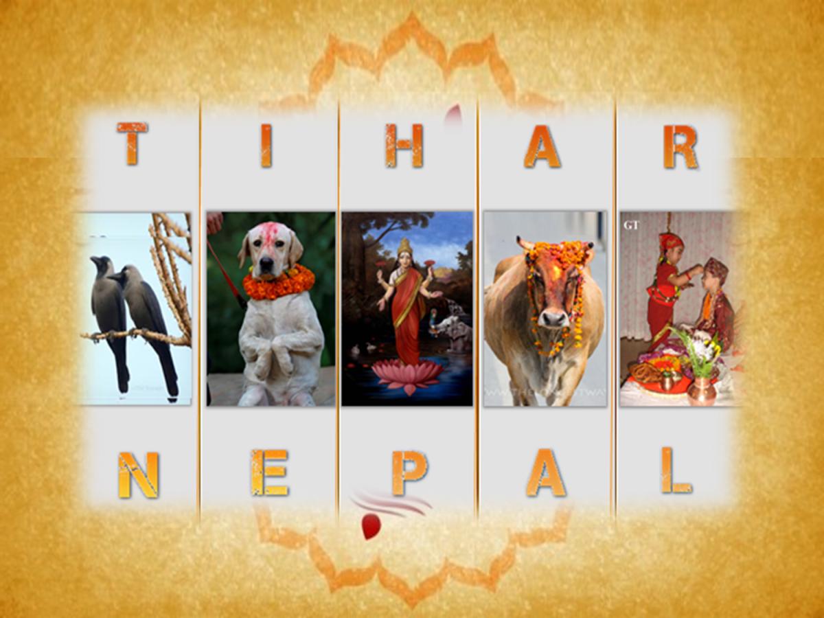 TIHAR festival of NEPAL