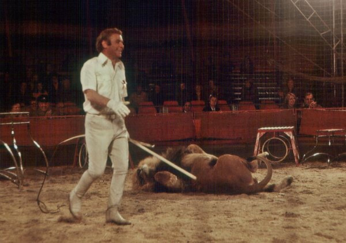 circus-training-lions-and-tigers
