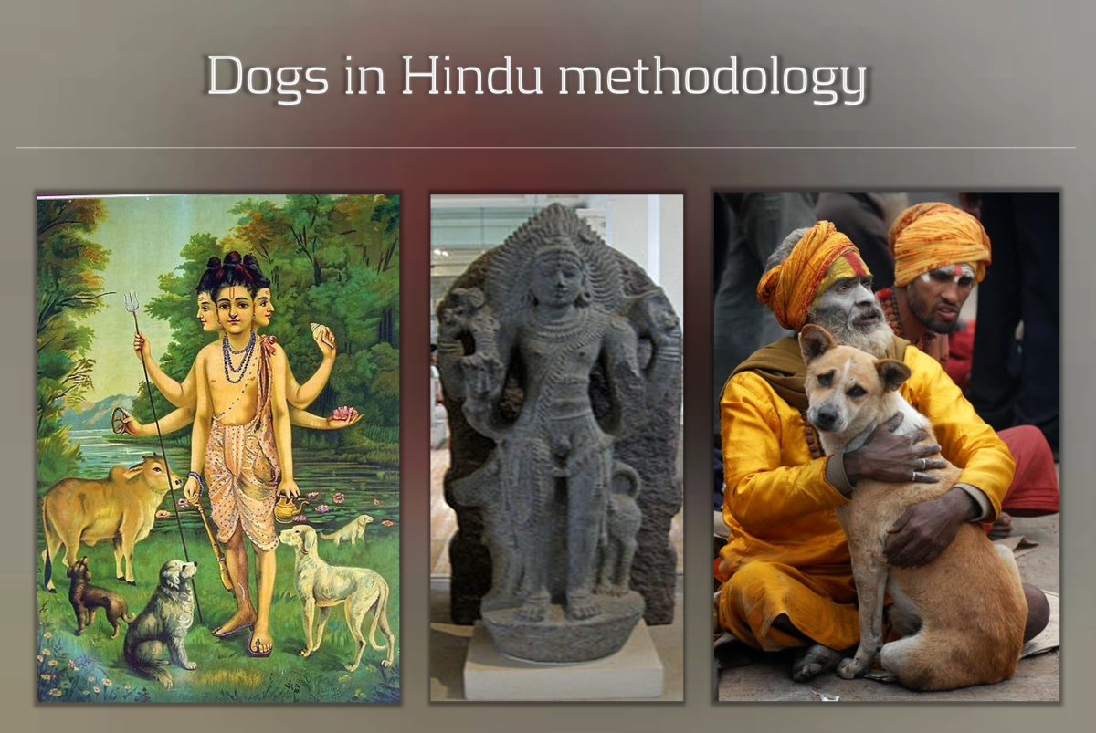 Dogs In Hindu methodology