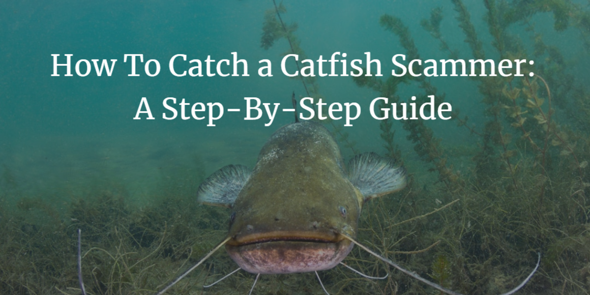 How to Catch a Catfish Scammer: A Step-by-Step Guide