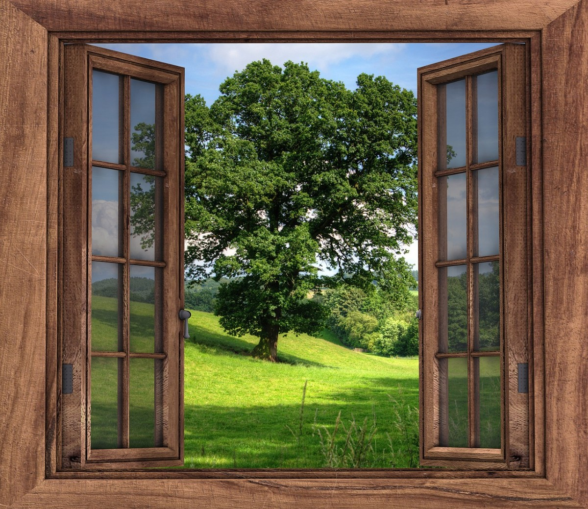 Opening a window has health benefits