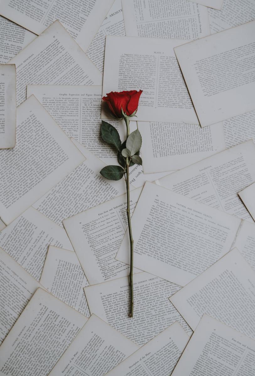 18 Standalone Romance Novels Worth Reading