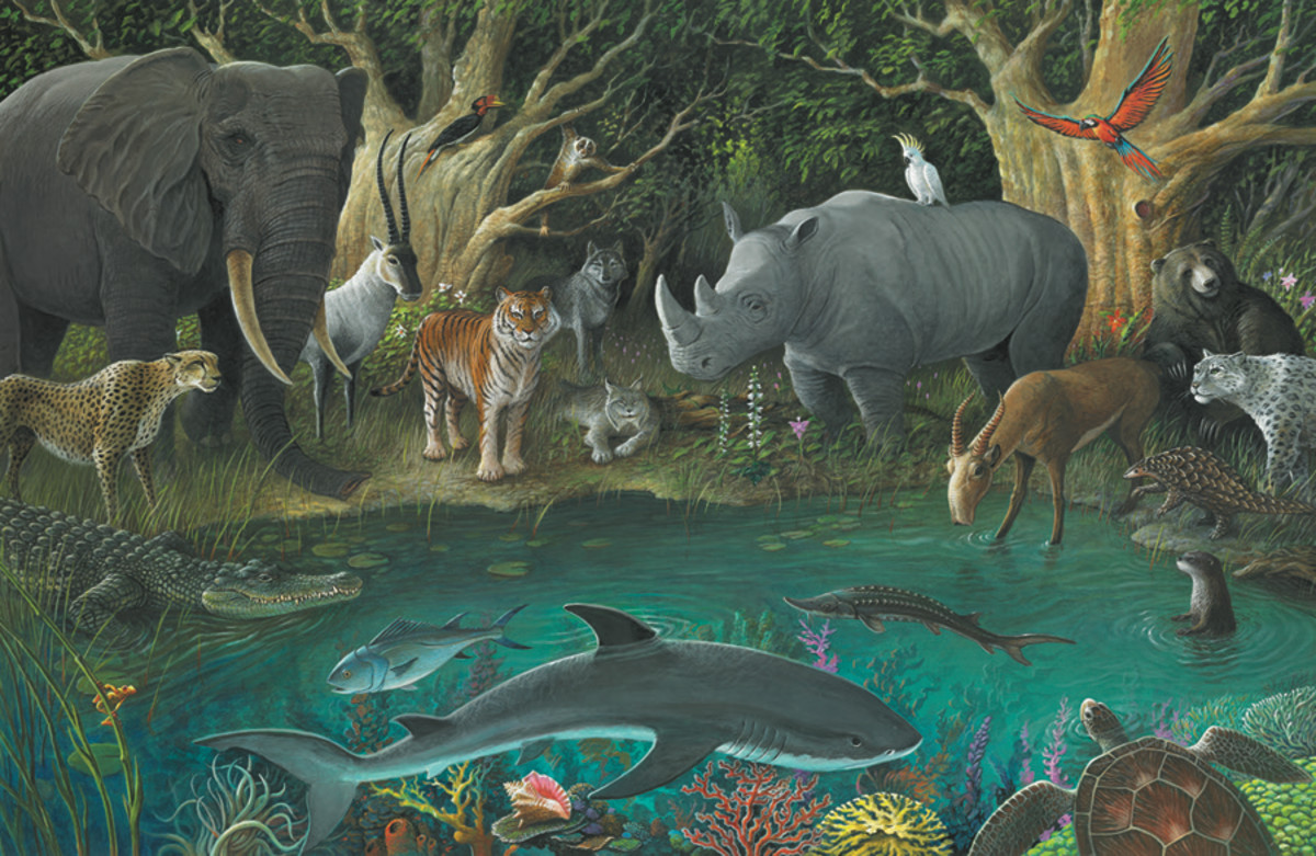 cruel-live-animal-trinkets