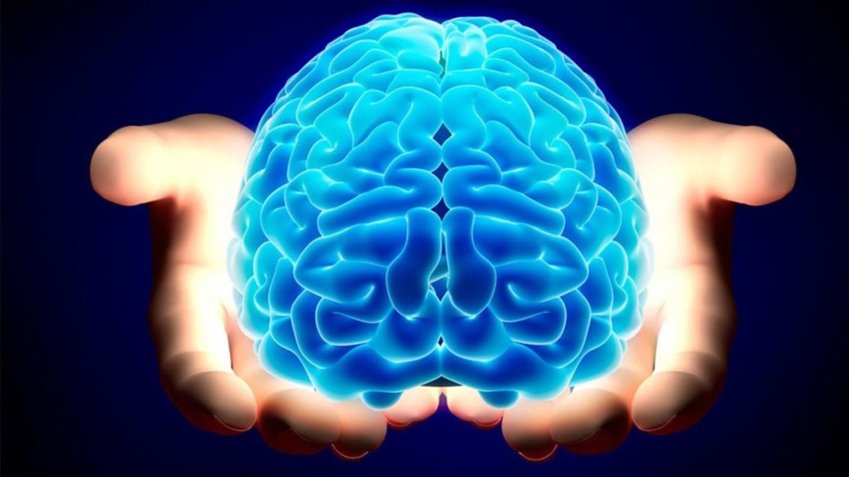 Mind Over Matter: Does Your Mind Exist Apart From Your Brain?