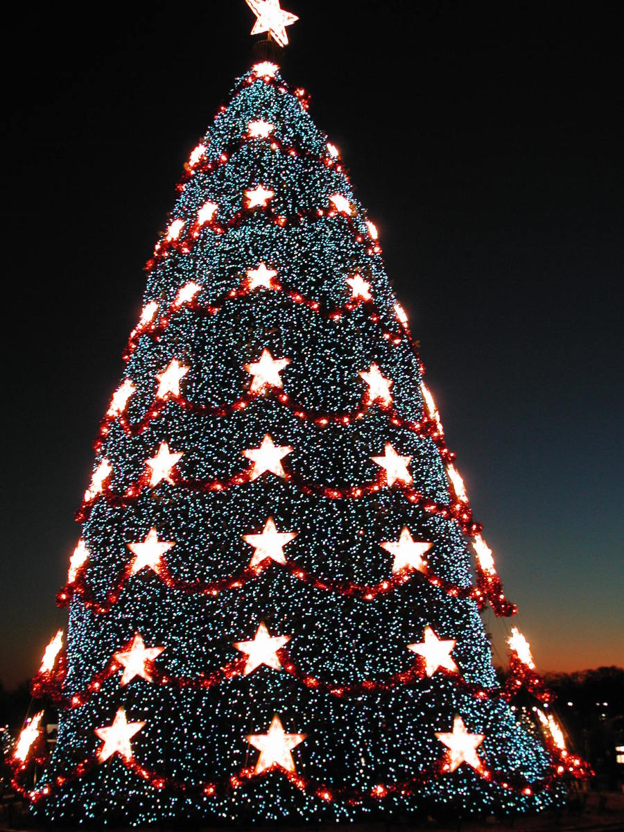 Whitehouse Christmas Tree Lighting