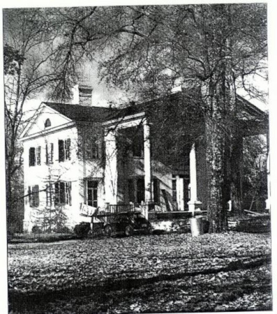 Tanglewood Sloan