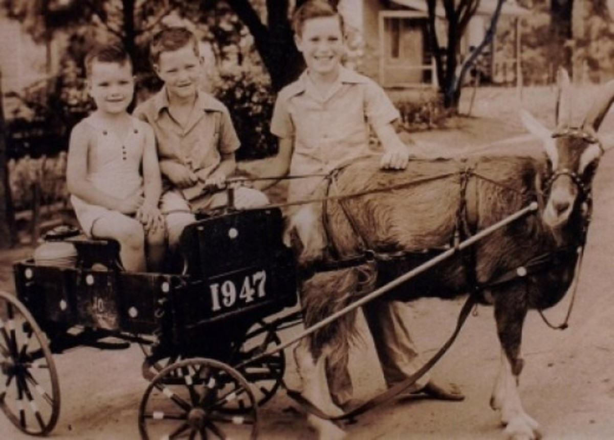Rod Terry Shares An Old Memory - Jack Terry, Rod Terry and Roy Terry - Thanks Rod!