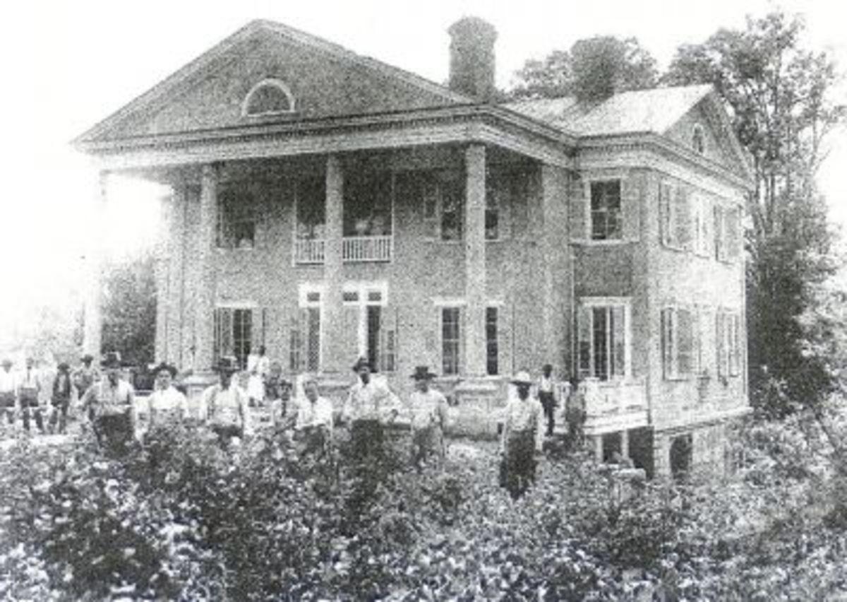 Tanglewood Sloan 1910