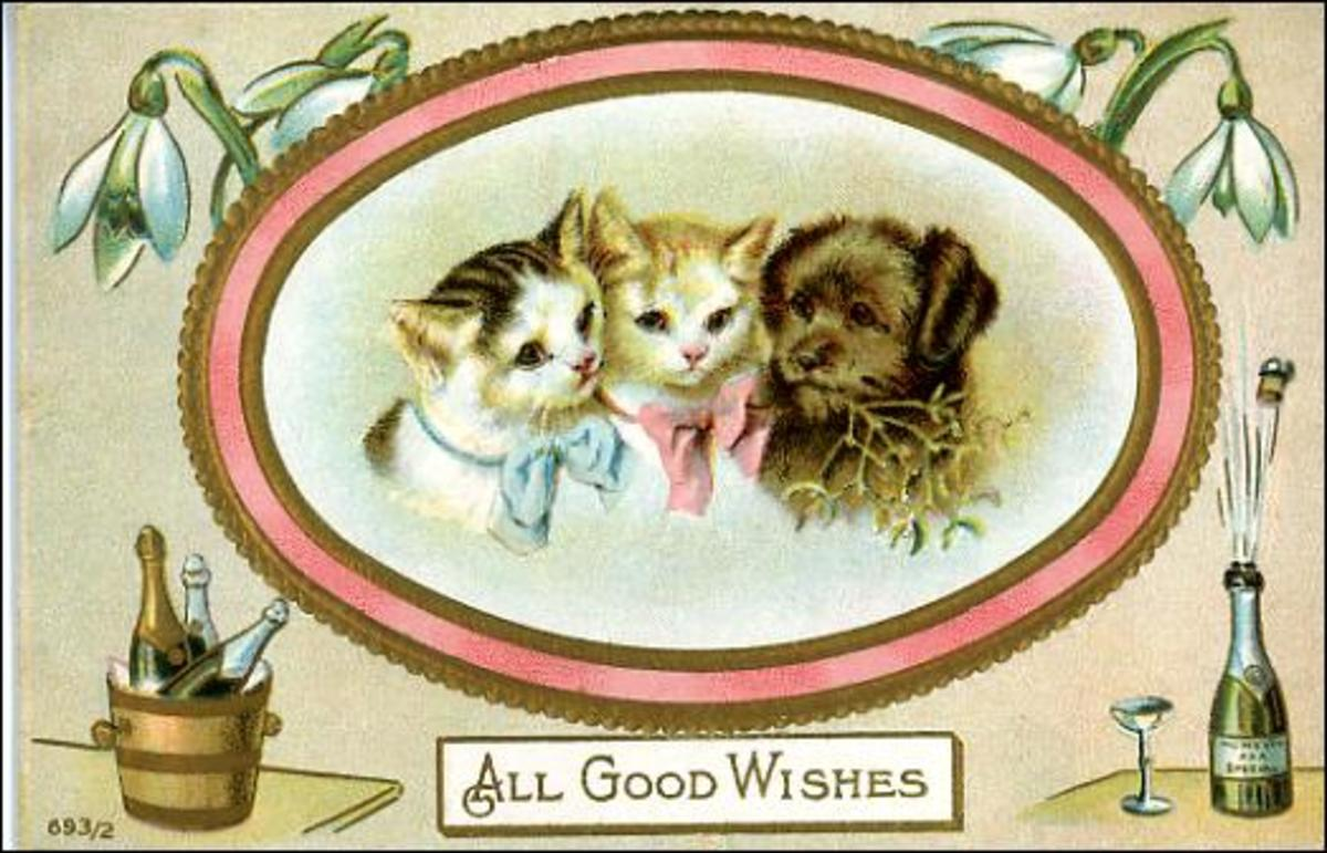 New Year Cards: Cats and dog